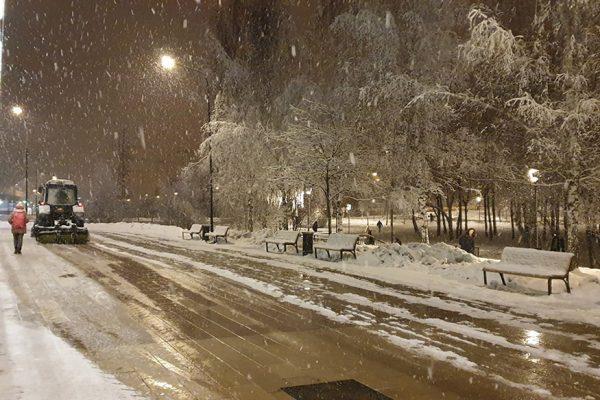 1 место — Счастливцева Светлана Алексеевна — Сказочная уборка снега